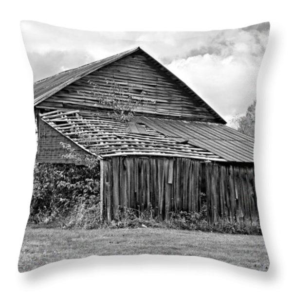 Rustic Charm Monochrome Throw Pillow by Steve Harrington