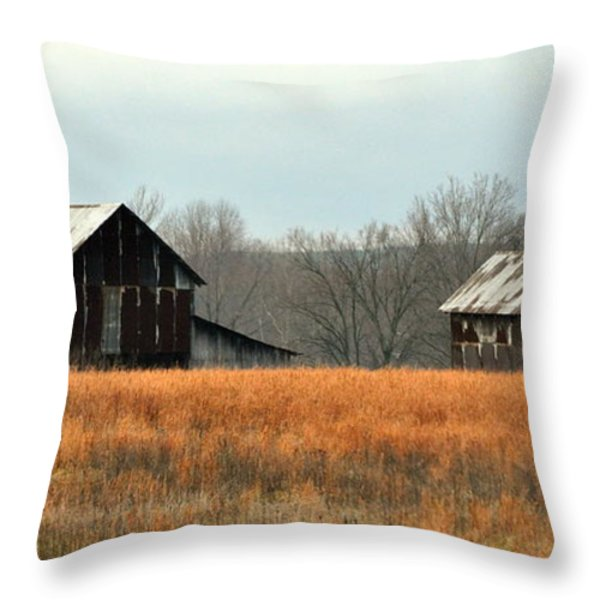 Rustic Illinois Throw Pillow by Marty Koch