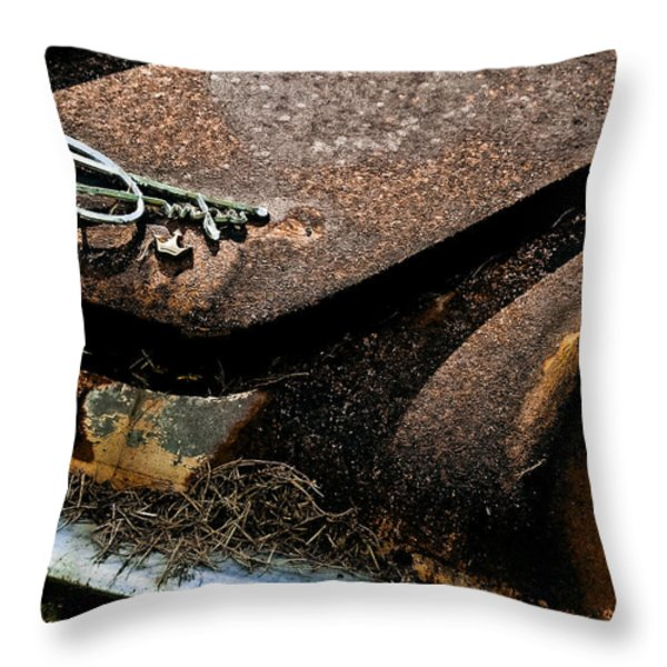 Rusty Impe Throw Pillow by DigiArt Diaries by Vicky B Fuller