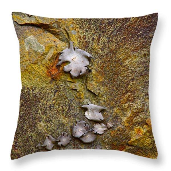 Rusty Red Peridotite With Lichen Throw Pillow by Karon Melillo DeVega
