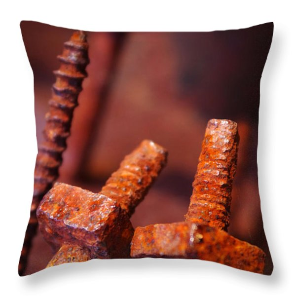 Rusty Screws Throw Pillow by Carlos Caetano