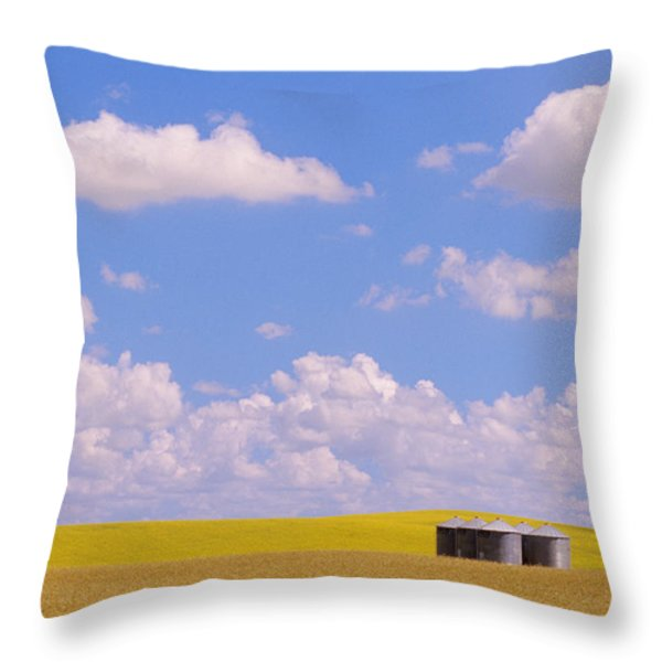 Rye, Canola And Grainery, Bruxelles Throw Pillow by Mike Grandmailson
