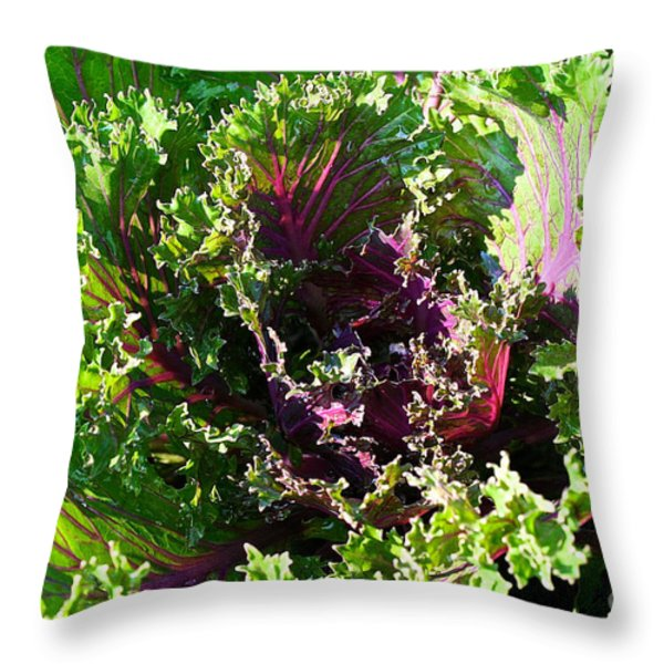 Salad Maker Throw Pillow by Susan Herber