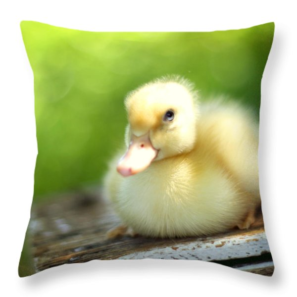 Sally Throw Pillow by Amy Tyler