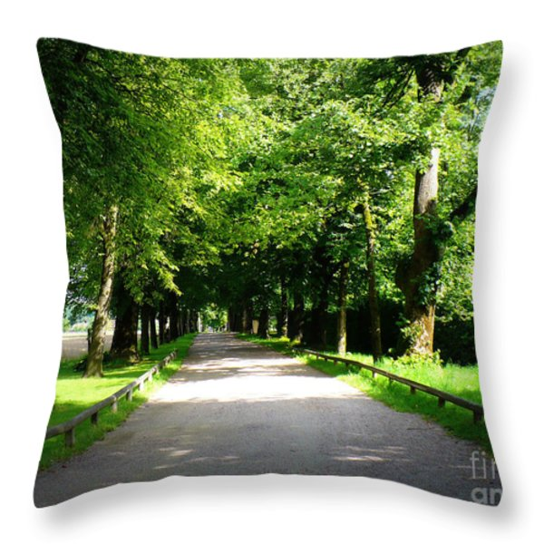 Salzburg Lane Throw Pillow by Carol Groenen