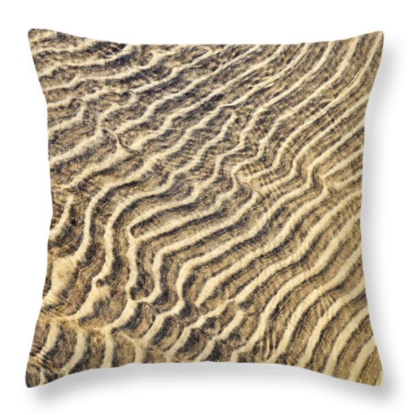 Sand Ripples In Shallow Water Throw Pillow by Elena Elisseeva