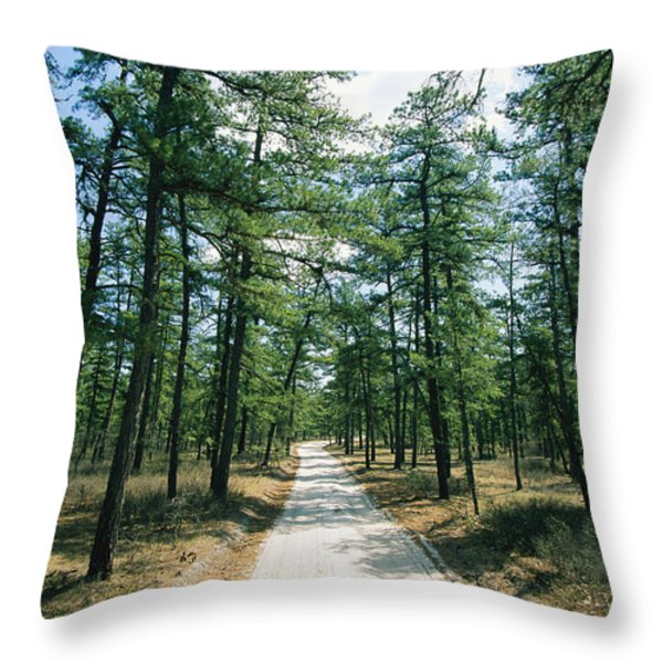 Sand Road Through The Pine Barrens, New Throw Pillow by Skip Brown