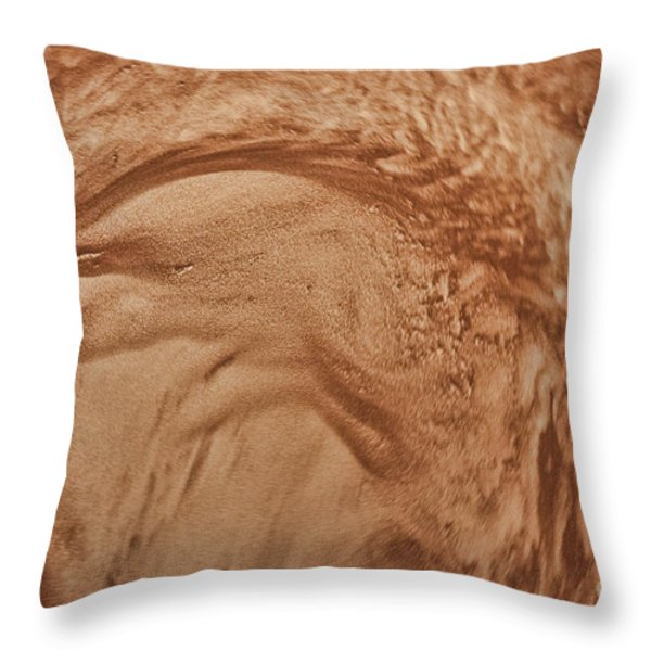 Sandstorm 2 Throw Pillow by Crystal Nederman