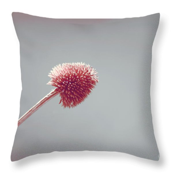 Sans Nom - s03b Throw Pillow by Variance Collections
