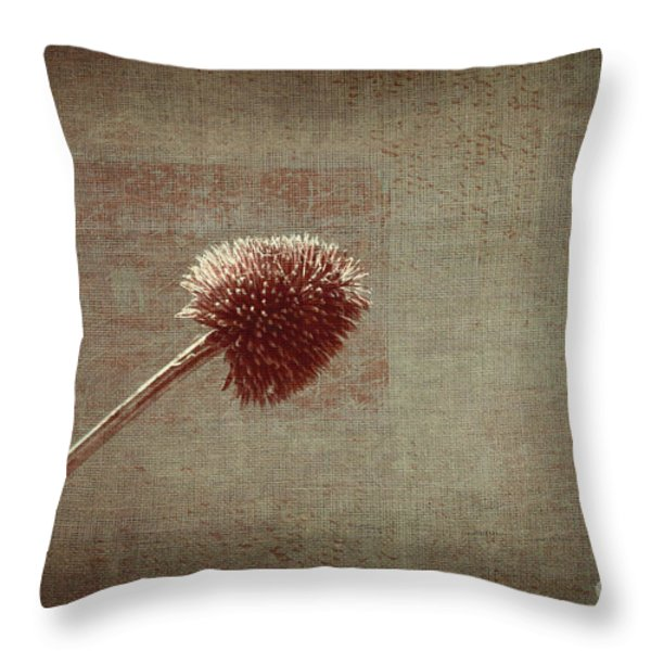 Sans Nom - s03p11t05 Throw Pillow by Variance Collections