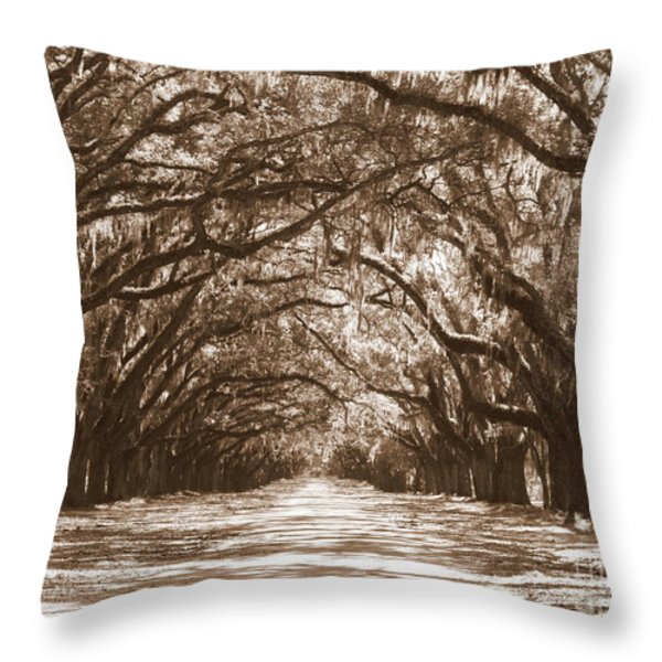Savannah Sepia - Glorious Oaks Throw Pillow by Carol Groenen