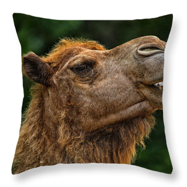 Say What Throw Pillow by Karol  Livote