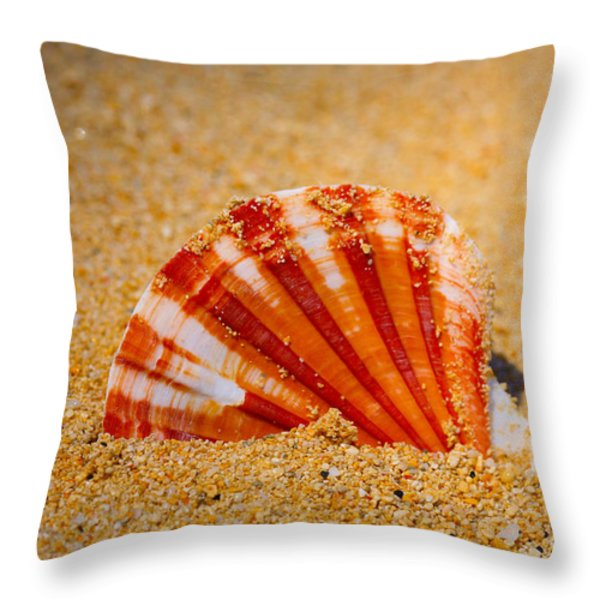 Scallop Shell Throw Pillow by Cheryl Young