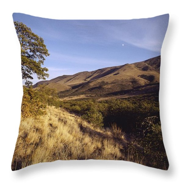 Scenic View Of The Yakima Valley Throw Pillow by Sisse Brimberg