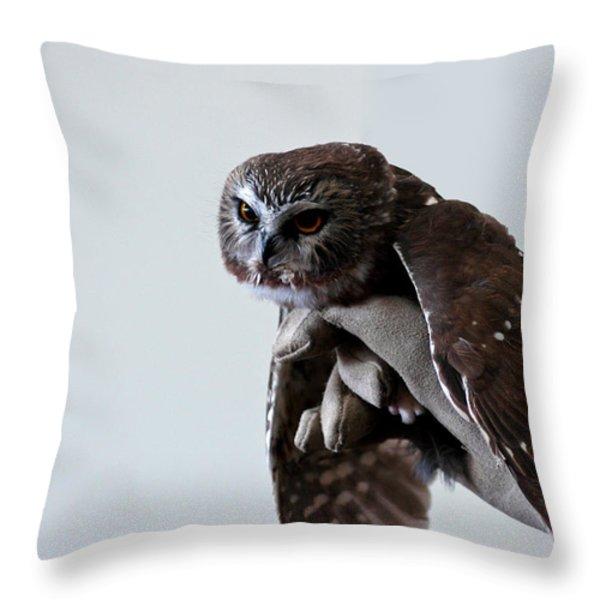 Screech Owl Throw Pillow by LeeAnn McLaneGoetz McLaneGoetzStudioLLCcom