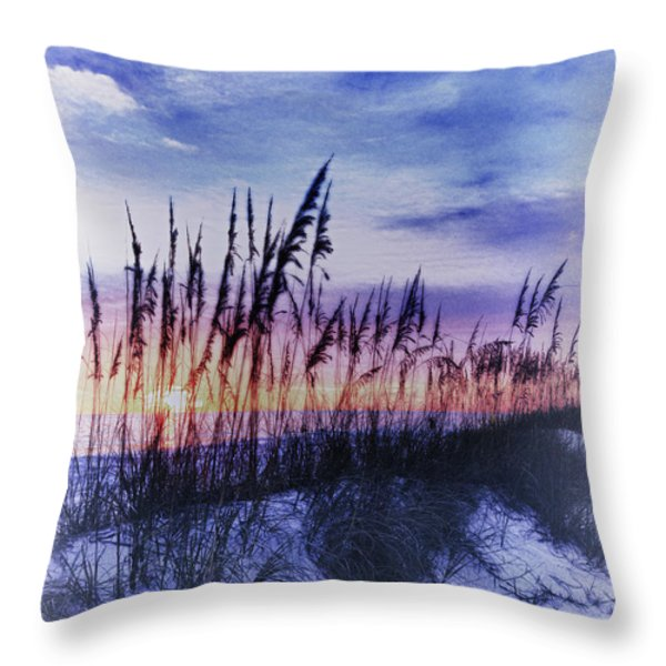 Se Oats 2 Throw Pillow by Skip Nall
