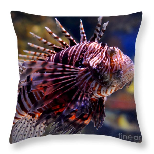 Sea Lion Throw Pillow by Pravine Chester