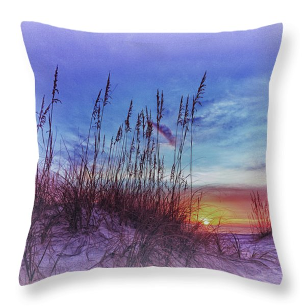Sea Oats 5 Throw Pillow by Skip Nall