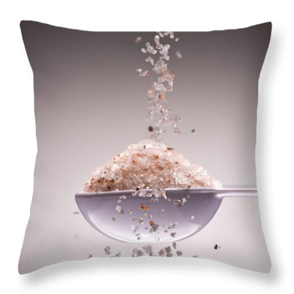Sea Salt Throw Pillow by Steve Gadomski