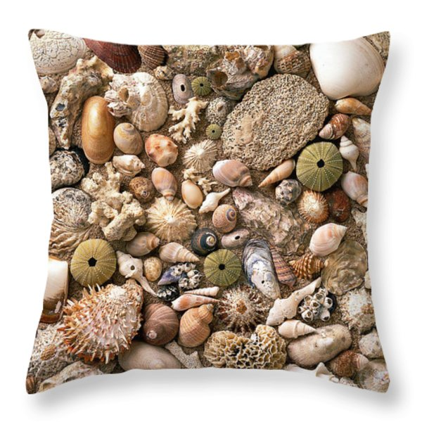 Sea Shells Throw Pillow by Mauro Celotti