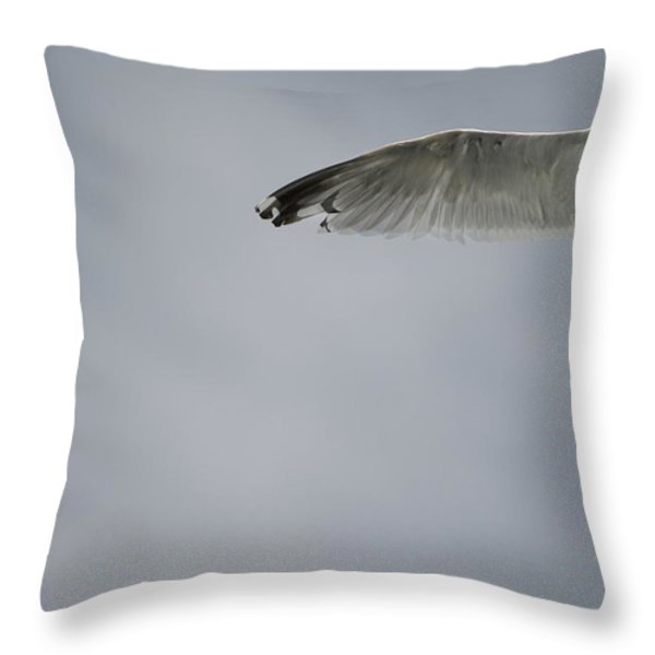 Seagull Throw Pillow by Keith Levit