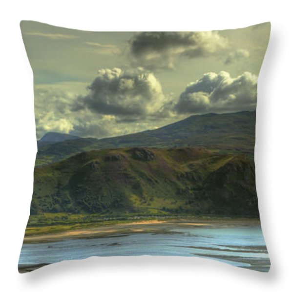 Seascape Throw Pillow by Svetlana Sewell
