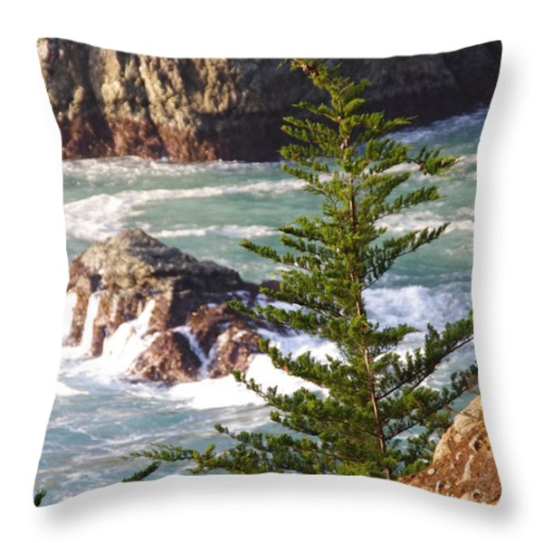 Secluded Big Sur Cove 2 Throw Pillow by Jeff Lowe