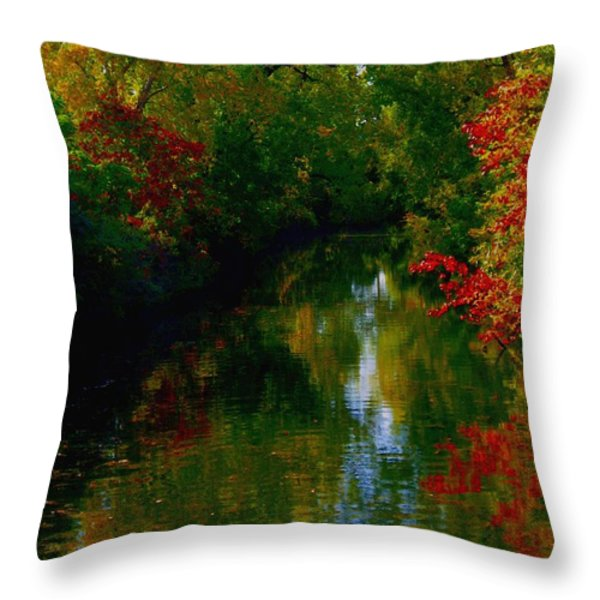 Secret Horse Creek Throw Pillow by Contemporary Luxury Fine Art