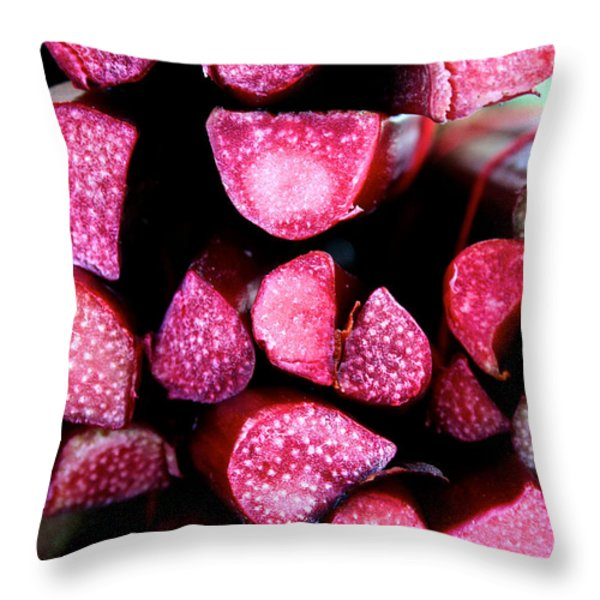 Seeking Pie Crust Throw Pillow by Susan Herber