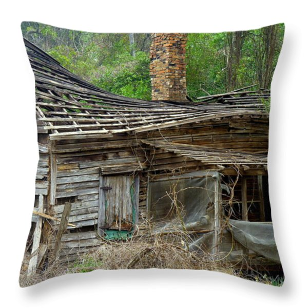 Seen Better Days Throw Pillow by Carla Parris