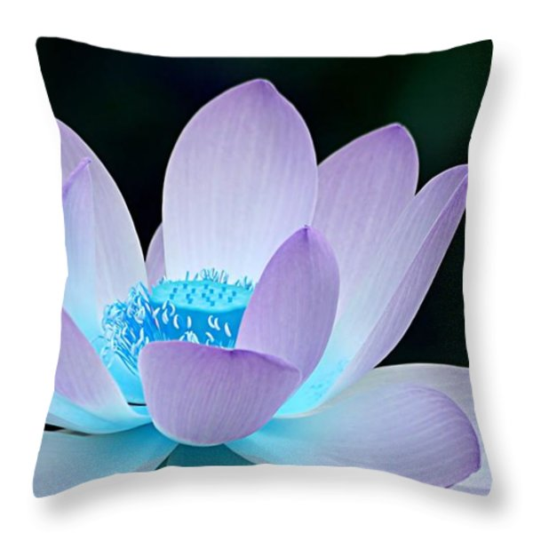 Serene Throw Pillow by Photodream Art