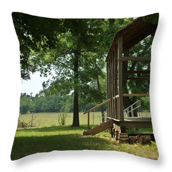 Settlers Cabin Arkansas 2 Throw Pillow by Douglas Barnett