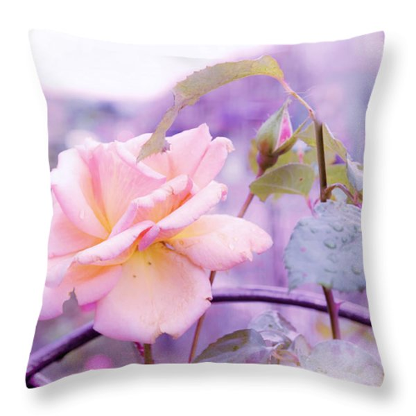 She Like The Ghost Beside Me. Scottish Rose Throw Pillow by Jenny Rainbow