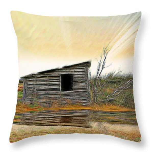 Shed In The Field Throw Pillow by Vickie Emms