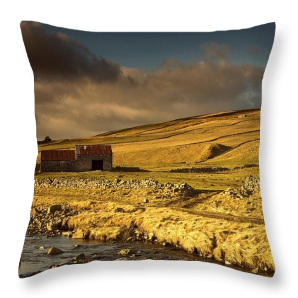 Shed In The Yorkshire Dales, England Throw Pillow by John Short