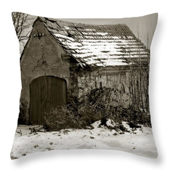 Shed Throw Pillow by Marcin and Dawid Witukiewicz