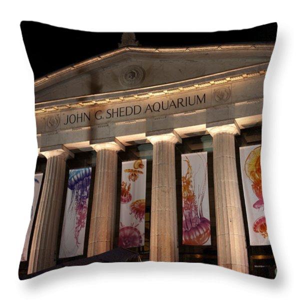 Shedd Aquarium With Jellyfish Exhibit Throw Pillow by Paul Velgos