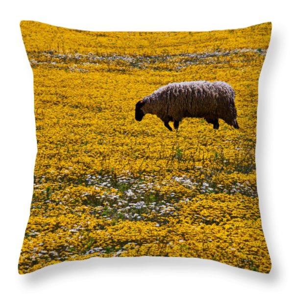 Sheep In Meadow Of Golden Flowers Throw Pillow by Garry Gay