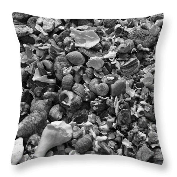 Shells Iv Throw Pillow by David Rucker