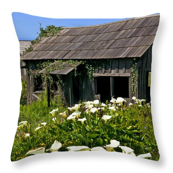 Shephers's shack Throw Pillow by Garry Gay
