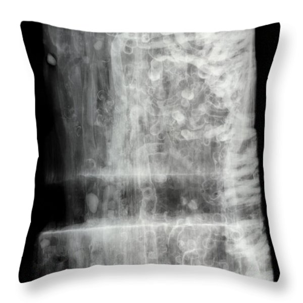 Shipworms Throw Pillow by Ted Kinsman