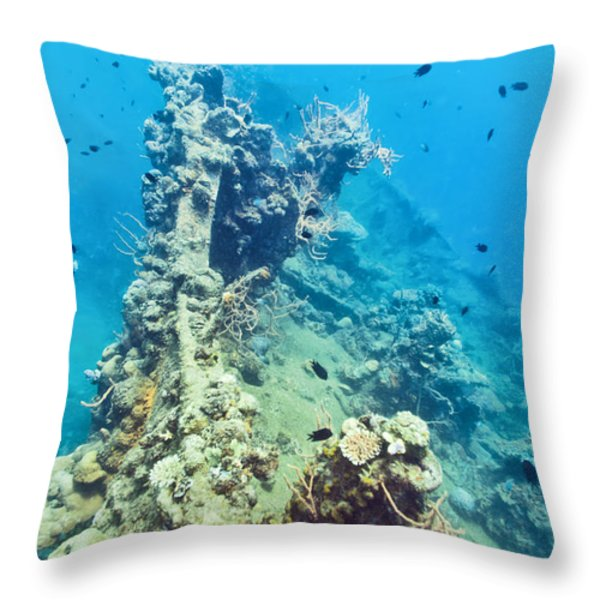 Shipwreck  Throw Pillow by MotHaiBaPhoto Prints