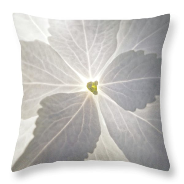 Shooting Star Throw Pillow by Christopher Holmes