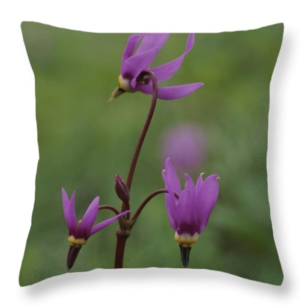 Shooting Star Wildflowers, Close View Throw Pillow by Norbert Rosing