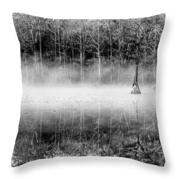 Shrouded Panoramic  Throw Pillow by JC Findley