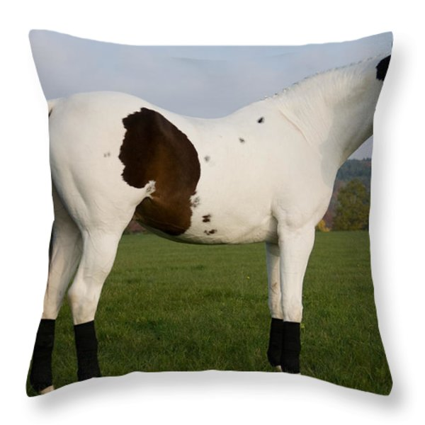 side view Throw Pillow by Ralf Kaiser