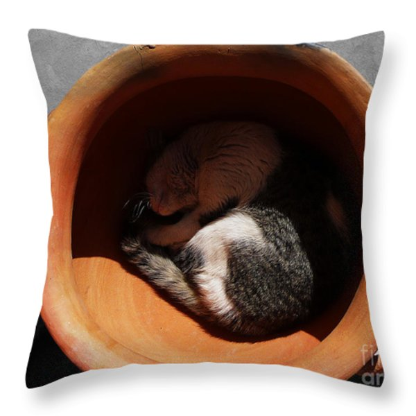 Siesta 2 Throw Pillow by Xueling Zou
