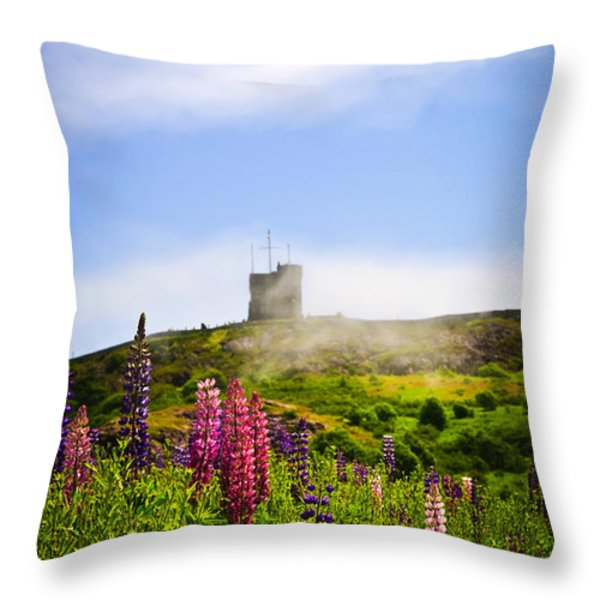 Signal Hill in St. John's Newfoundland Throw Pillow by Elena Elisseeva