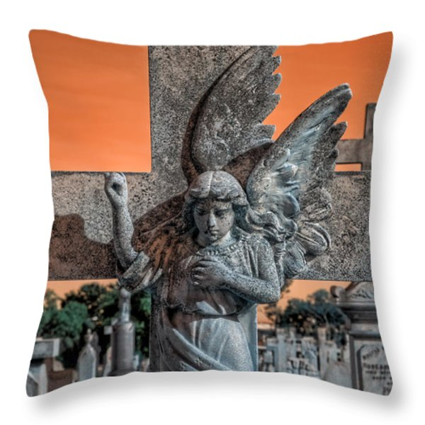 Silent Vigil Throw Pillow by Wayne Sherriff