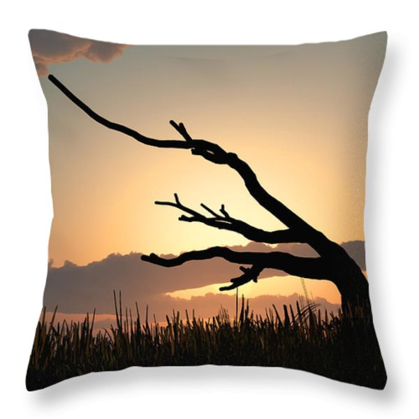 Silhouette Throw Pillow by Bob Orsillo